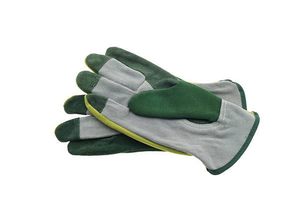 Gardening Gloves stock photo