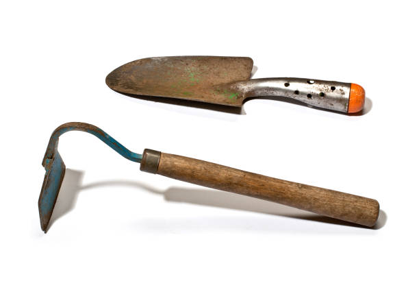 Gardening hand tool isolated on the white background stock photo