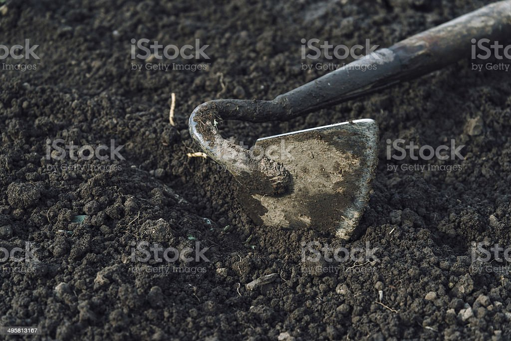 Gardening hoe royalty-free stock photo