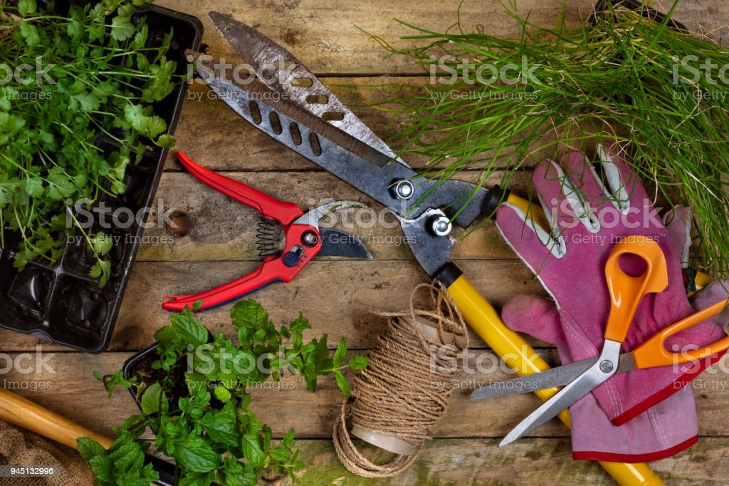 Gardening Horticulture A Few Garden Tools Used When Gardening
