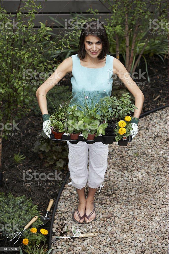 Giardinaggio in giardino urbano foto stock royalty-free