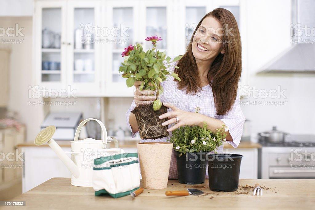 Gardening made easy stock photo