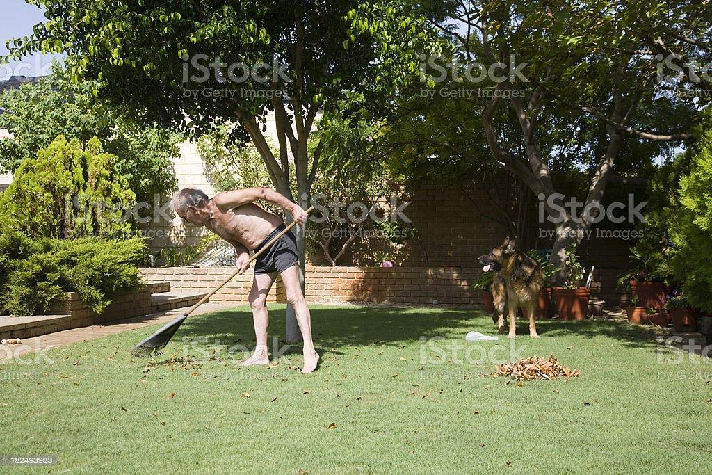 Gardening Man royalty-free stock photo