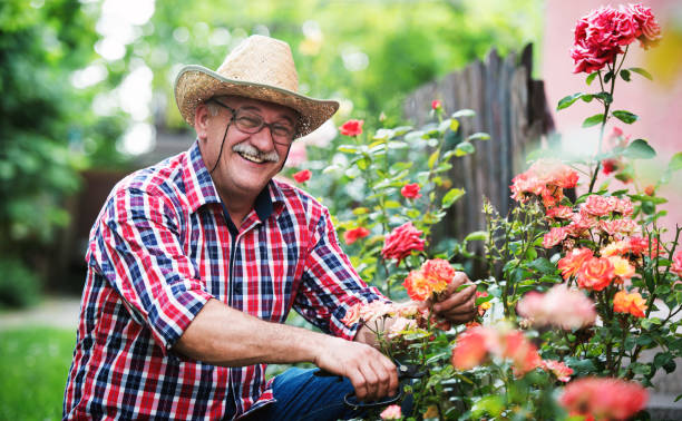 Gardening. Man working in the garden. Hobbies and leisure stock photo