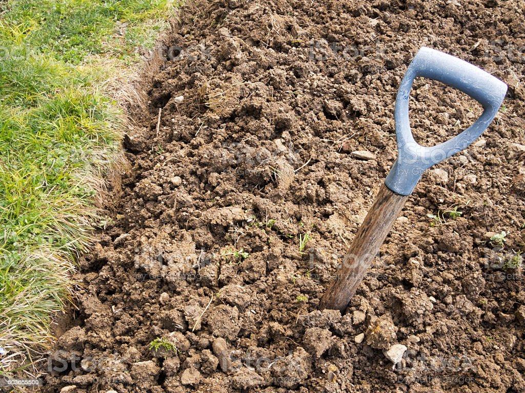 Gardening nightmare - poor soil stock photo
