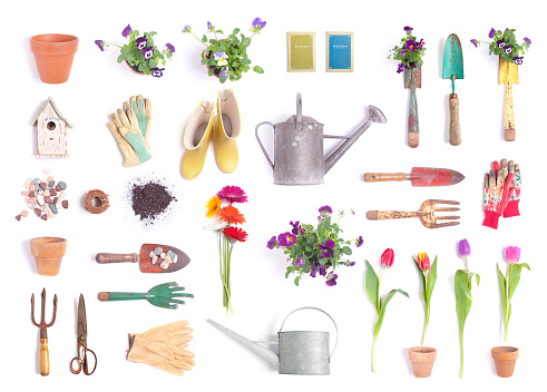 Vintage Garden Equipment and flowers Isolated on White