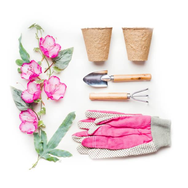 원 예 또는 개념 정원 도구, 흰색 바탕에 토 탄 남 비 그리고 분홍색 장갑과 꽃을 심기 심기 - 원예 장갑 뉴스 사진 이미지