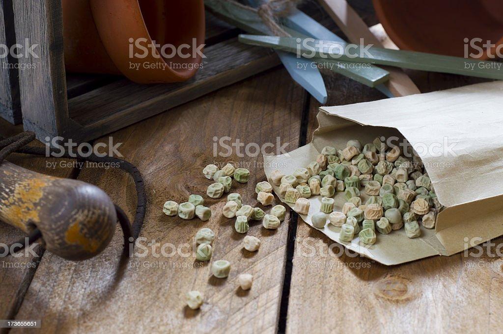 Gardening - Pea Seeds stock photo