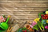 istock Gardening 673657432