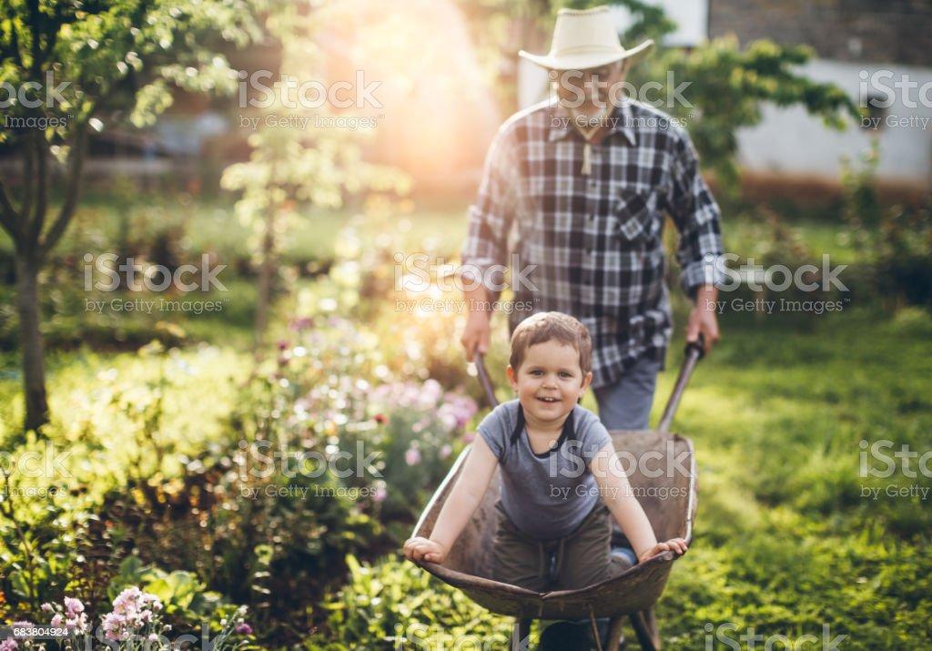 Gärtnern – Foto