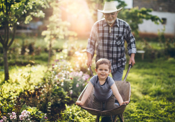 gardening - rural lifestyle stock photos and pictures