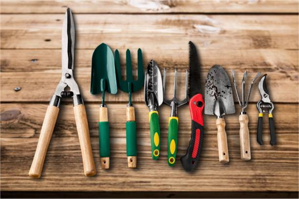 Gardening. Row of gardening tools on wooden background gardening equipment stock pictures, royalty-free photos & images