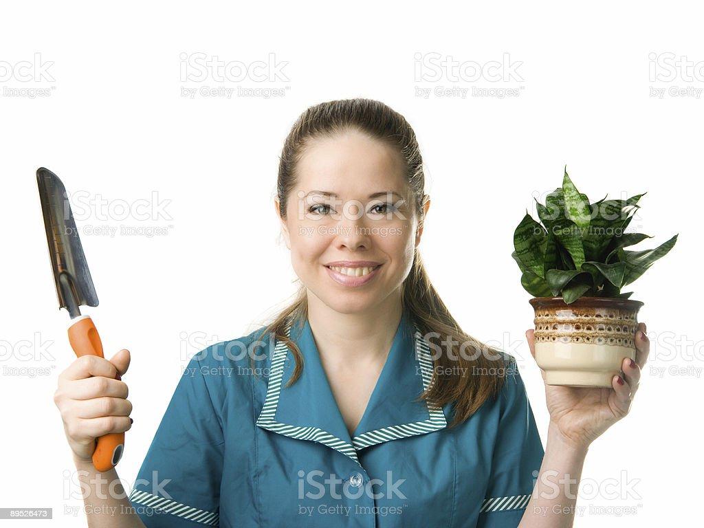 Gärtnern Lizenzfreies stock-foto