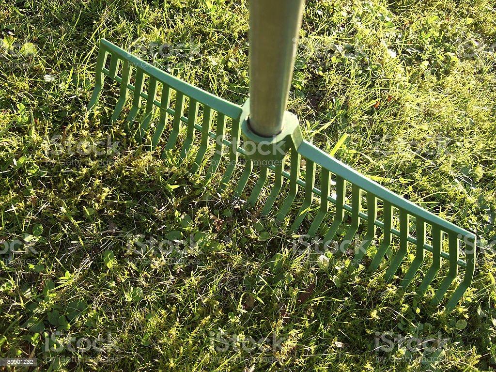 La jardinería foto de stock libre de derechos