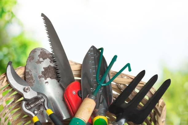 Gardening. Many gardening tools on wooden background gardening equipment stock pictures, royalty-free photos & images