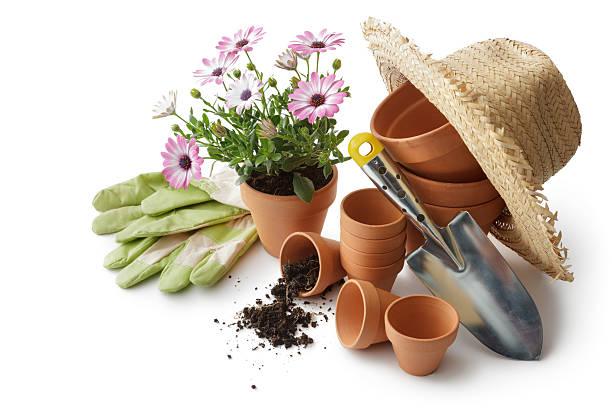 원예용: 공장요 pots, 삽, 밀짚모자 및 장갑 - 원예 장갑 뉴스 사진 이미지