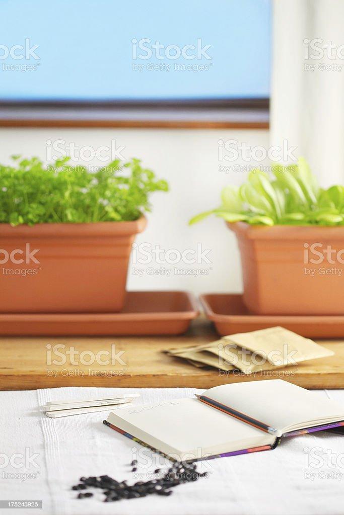 gardening preparations stock photo