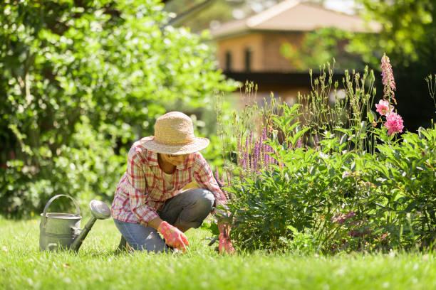 Gartenarbeit – Seniorin mit Blumen im Garten – Foto