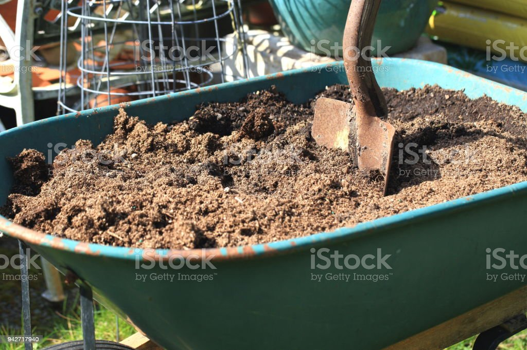 Gardening Shovel and Wheelbarrow stock photo