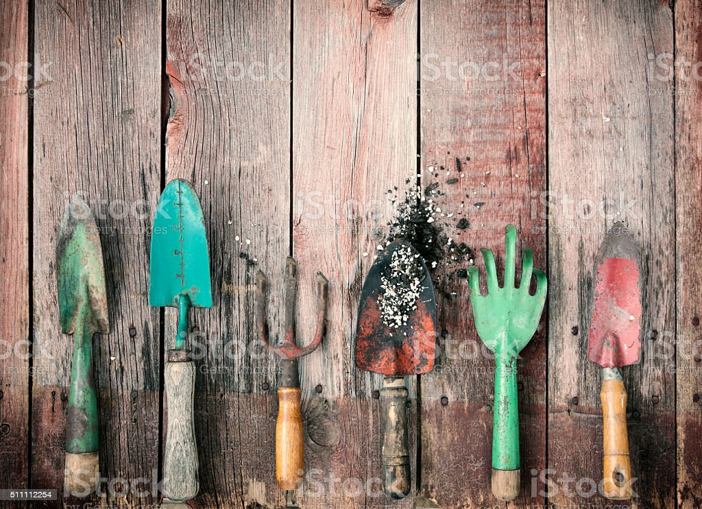 Gardening Shovels and Rakes with Dirt on Old Wood Background stock photo