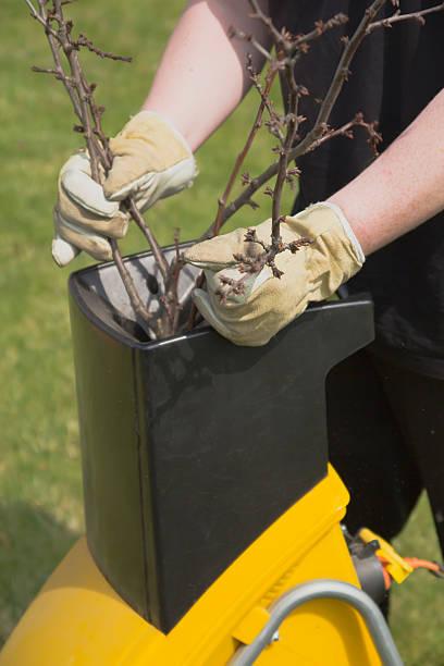 gardening- shredder - häcksler stock-fotos und bilder