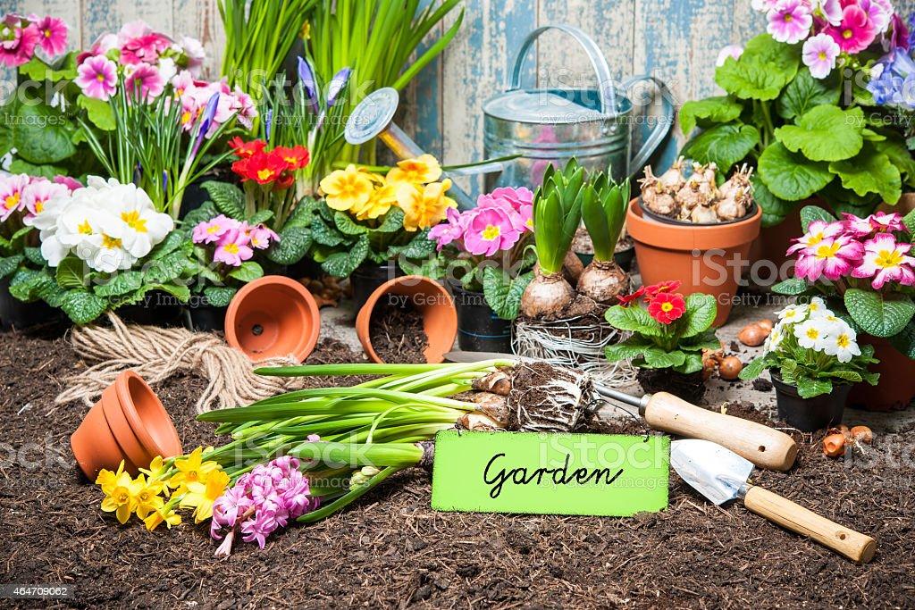Giardinaggio E Fiori.Segnale Da Giardinaggio E Fiori Fotografie Stock E Altre