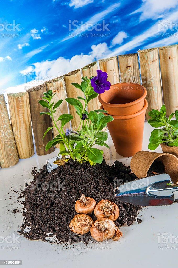 Gardening stuff with blue sky background stock photo