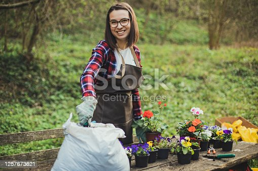 A brunette is preparing flowerpots.