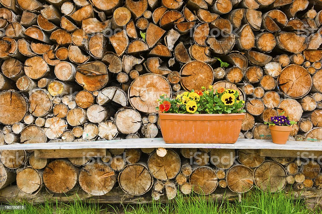 Gardening terracotta flower box on bench wood stack background royalty-free stock photo