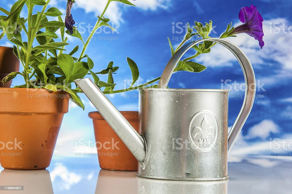 Gardening theme with hard light and saturated colors stock photo