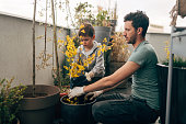 Young man and his son taking care of their plants on the balcony of loft apartment