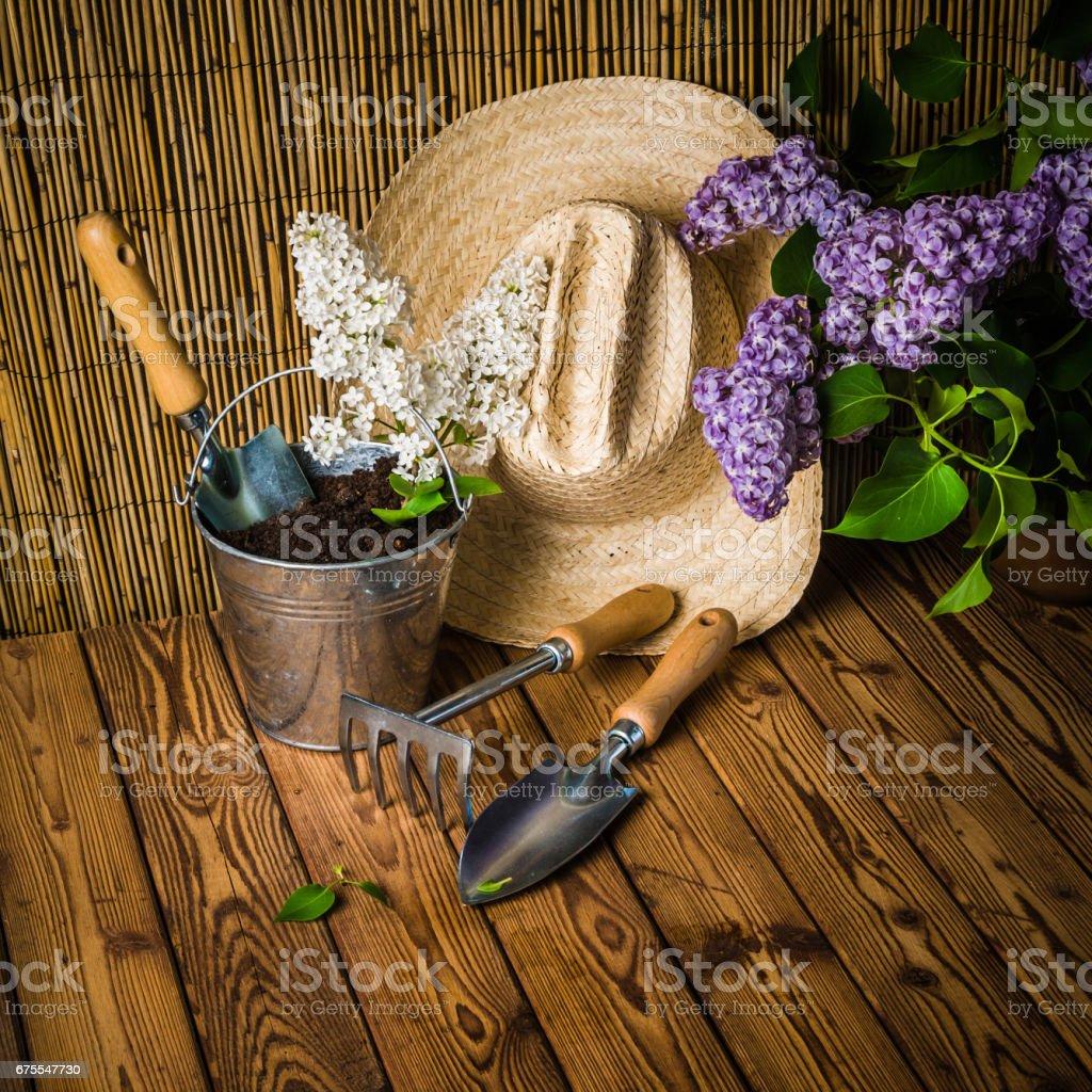 Gartenarbeit, Werkzeuge und einen Zweig von einer blühenden weißem Flieder – Foto