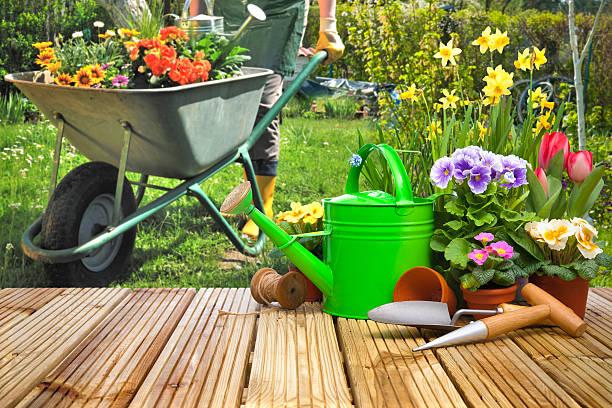 gardening tools and flowers on the terrace - kruiwagen met gereedschap stockfoto's en -beelden
