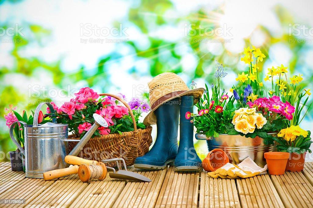 Herramientas De Jardinería Y Flores En La Terraza Foto De