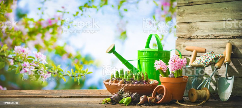 Gardening tools and spring flowers on the terrace royalty-free stock photo