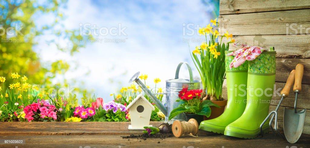 Gartengeräte und Frühlingsblumen auf der Terrasse – Foto