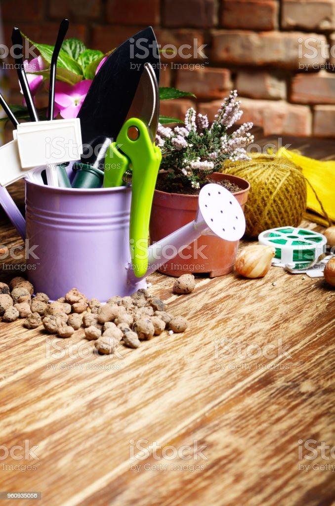 Gartengeräte der Schaufel Rechen, Etiketten und Gießkanne auf Holztisch - Lizenzfrei Ausrüstung und Geräte Stock-Foto
