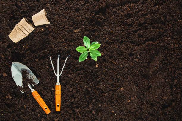 Gartenwerkzeuge auf der Gartenböden, die den Hintergrund der Gartenböden überschauden – Foto