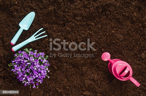 927125180 istock photo Gardening tools on garden soil texture background top view 930465544