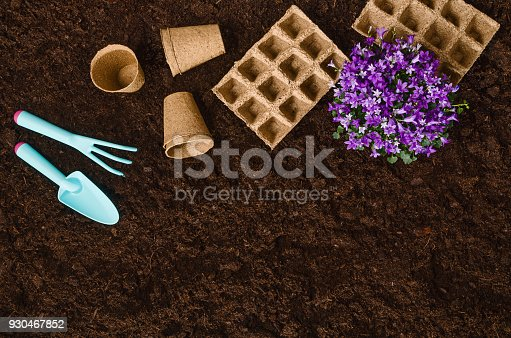 927125180 istock photo Gardening tools on garden soil texture background top view 930467852