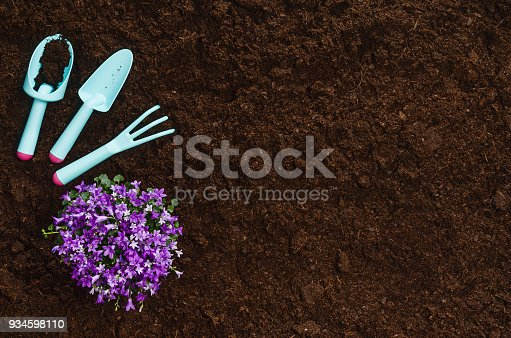 927125180 istock photo Gardening tools on garden soil texture background top view 934598110