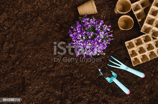927125180 istock photo Gardening tools on garden soil texture background top view 934598214