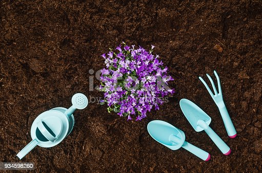 927125180 istock photo Gardening tools on garden soil texture background top view 934598260