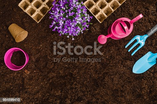 927125180 istock photo Gardening tools on garden soil texture background top view 934599410
