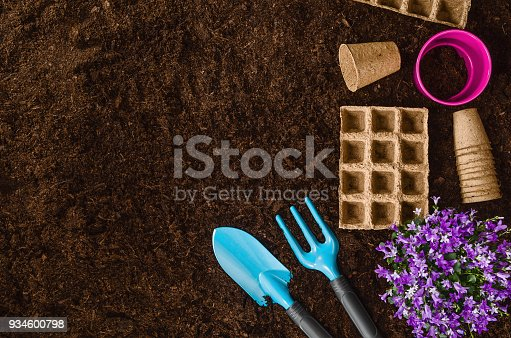 927125180 istock photo Gardening tools on garden soil texture background top view 934600798