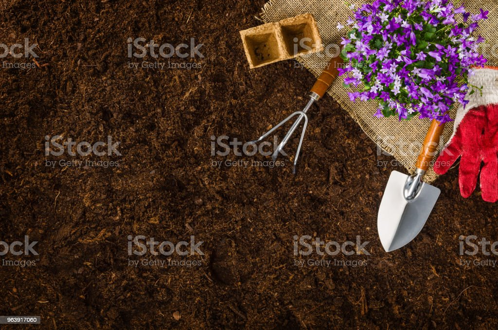 Gardening tools on garden soil texture background top view - Royalty-free Above Stock Photo