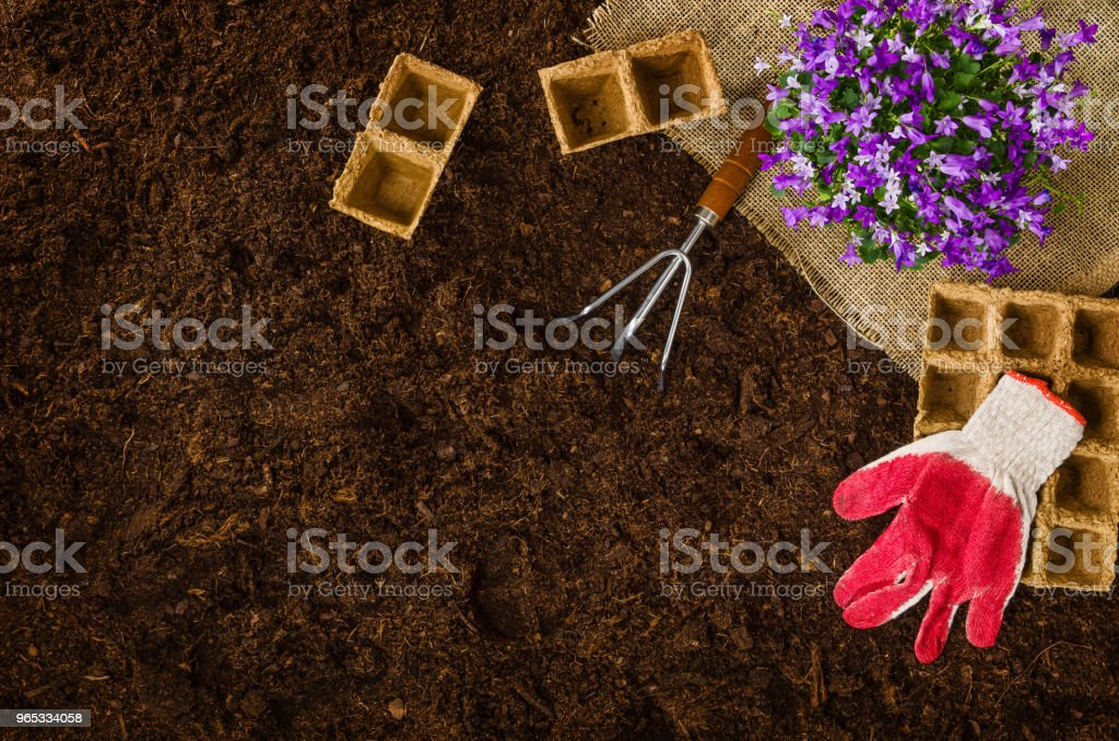Gardening tools on garden soil texture background top view royalty-free stock photo