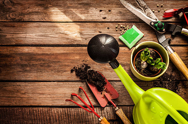 Gardening tools on vintage wooden table - spring Gardening tools, watering can, seeds, plants and soil on vintage wooden table. Spring in the garden concept background with free text space. gardening equipment stock pictures, royalty-free photos & images