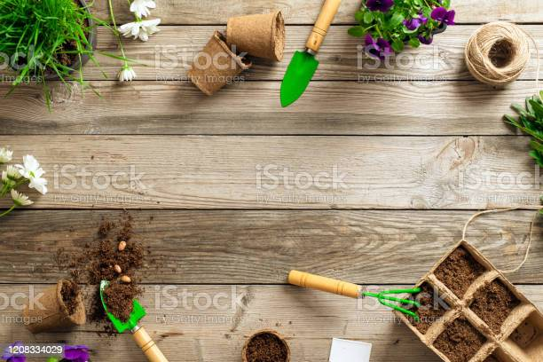 Gardening tools on wooden background spring garden works concept flat picture id1208334029?b=1&k=6&m=1208334029&s=612x612&h=ydjqs1d9hx2hhvtf9l3waqre2nxmhaq2dywhmqkceoy=