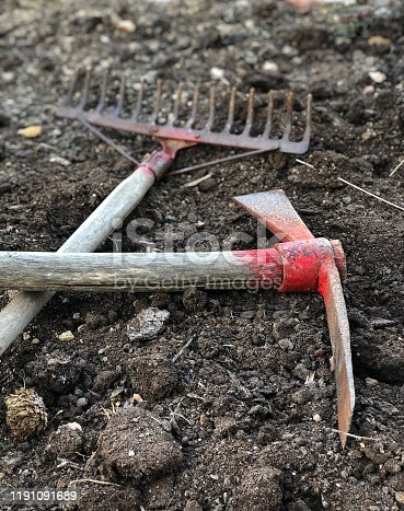 An old pickax and harrow on the ground